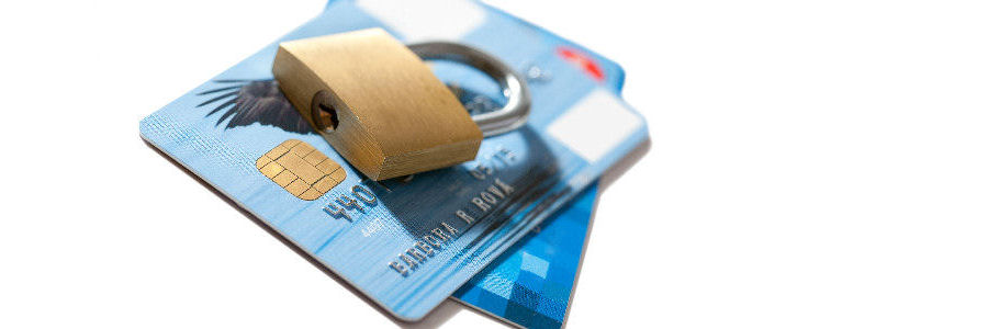 Secure credit card payment system included